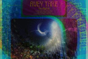 REVIEW: Avey Tare – 'Eucalyptus' (Domino)