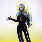 Front cover of 'Vulnicura'