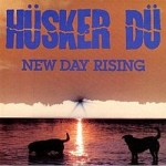Front cover of 'New Day Rising'
