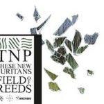 these_new_puritans_field_of_reeds