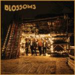 blossoms_blossoms