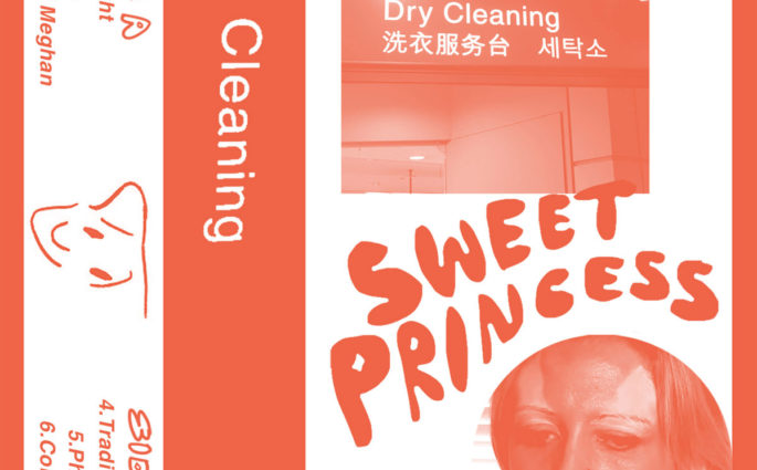 Dry Cleaning Sweet Princess